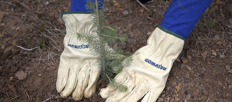 Close-up of Komatsu gloves during tree planting