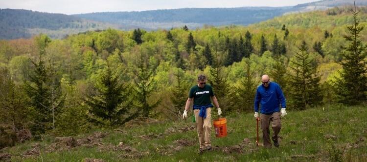 Komatsu executives planting trees in Appalachia