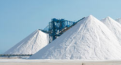 Joy Global, Markets, Industrial minerals, salt, Salt Institute, preview
